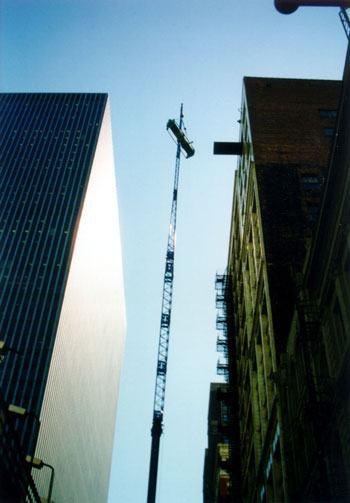 Murphy&Miller-Crane